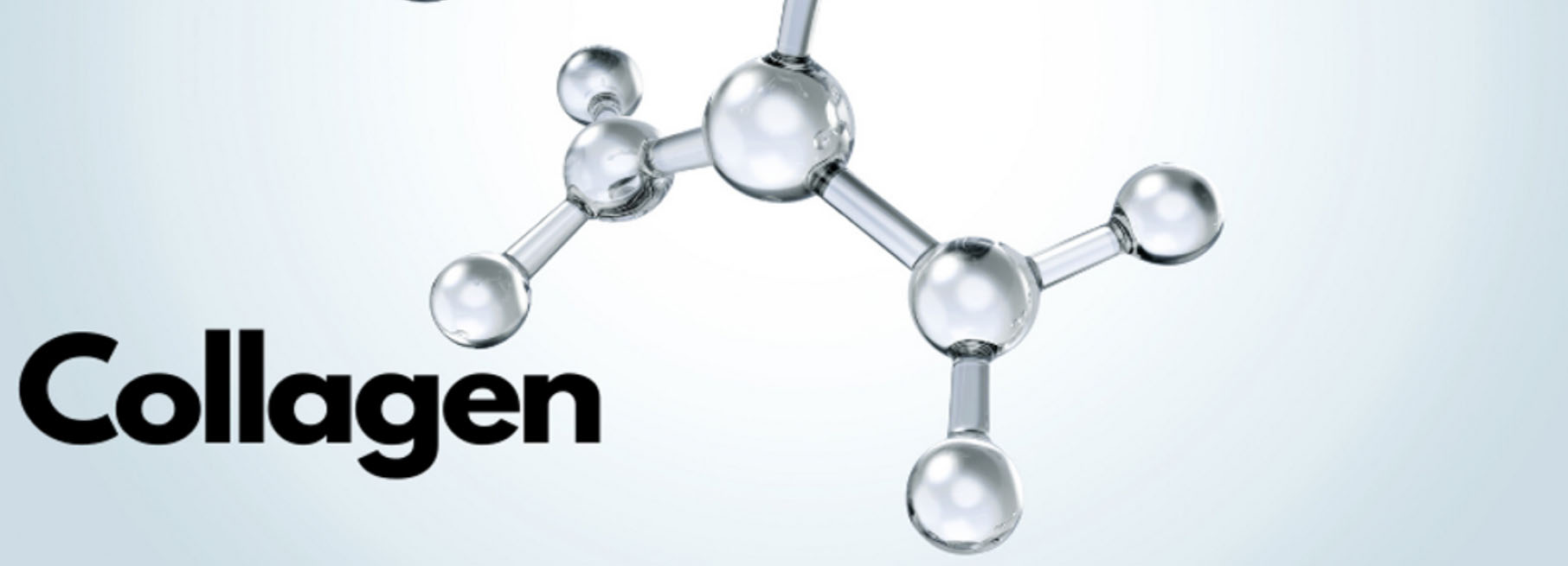 collagen large image